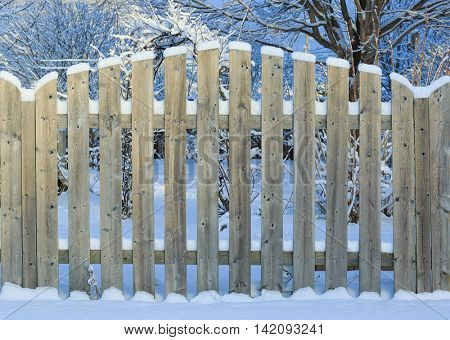 A board fence around a backyard garden covered in snow.