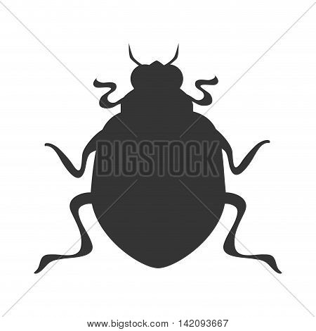 bug scarab beetle insect animal  vector graphic isolated and flat illustration