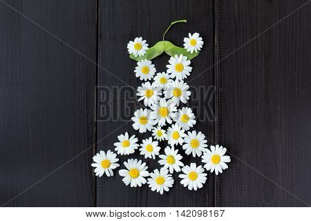 idea a summer dress of daisies on a green maple seeds hanger / summer wardrobe with fashionable floral dress