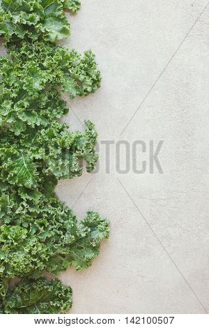 Rastan, green leafy cabbage. Border of fresh green leaves on rustic background, top view, blank space
