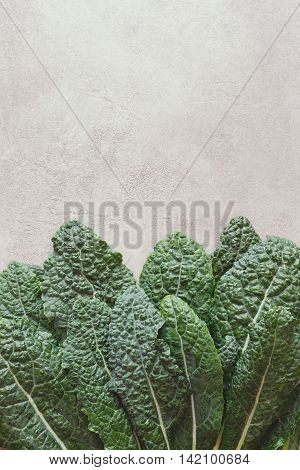 Fresh bunch of kale. Freshly washed organic kale on rustic background.  Top view, vintage toned image, blank space