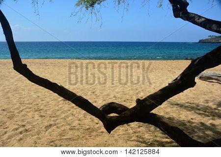 Hawaiin Island beach on a summers day