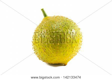 Green baby jackfruit isolated on white background.fruit for health