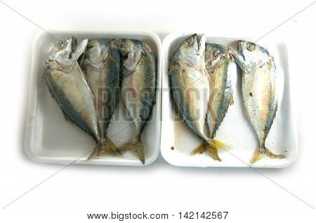 Mackerels steamed in a pack on white background