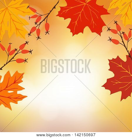 Autumn fall background. Greeting card with hand drawn maple leaves and rose hips. Modern blurred vector illustration with bokeh lights.