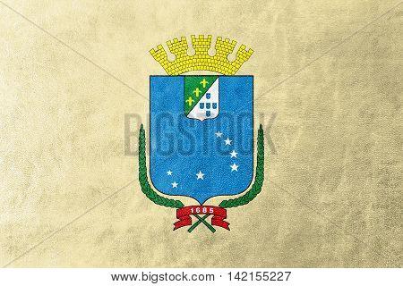 Flag Of Sao Luis, Maranhao, Brazil, Painted On Leather Texture