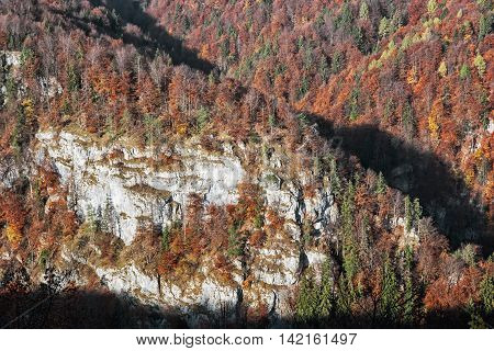 The rock in autumn forest by sunset in Harmanec Slovak republic. Natural scene. Deciduous trees. Beautiful place.