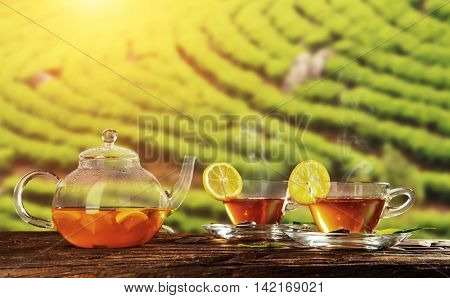 Two cups of hot tea and tea-pot served on wooden table, plantation on background