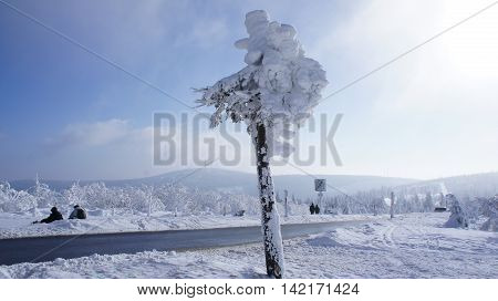 Hikers on the Fichtelberg in the Erzgebirge Germany, view to the Klinovec in Czech Republic, thick snowy spruces, blue sky and cloud