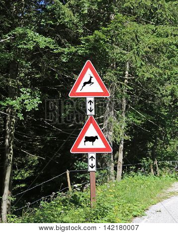 Two Road Signs Near The Forest Attention Crossing Animals