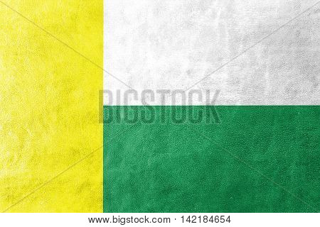 Flag Of Zielona Gora, Poland, Painted On Leather Texture