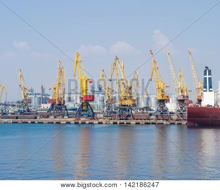 Berth of a sea cargo port with harbor cranes on the background of the grain terminal