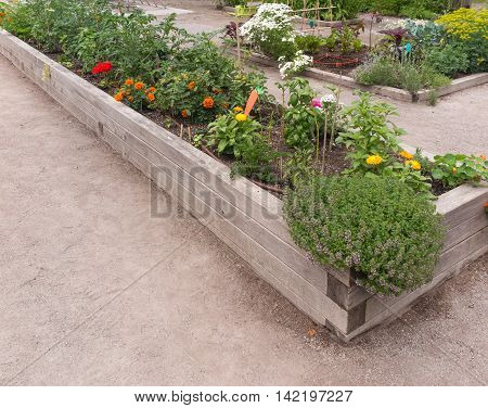 Raised garden beds in neighborhood garden in summer