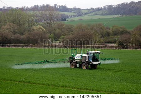 TRING, UK - APRIL 21: A crop sprayer applies fungicide to the young cereal plants on a bright spring day on April 21, 2016 in Tring. The UK grows around 16mn tonnes of wheat per annum