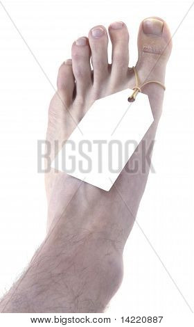 Toe Tag Top View