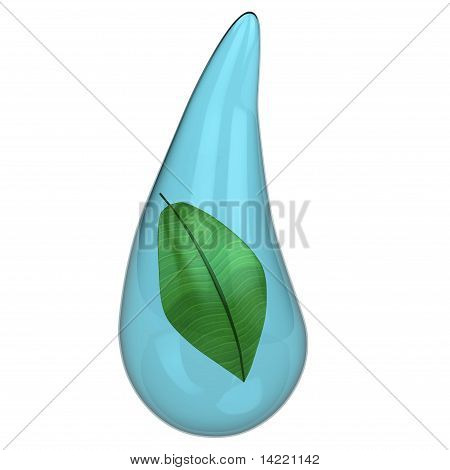 Green Plant In A Water Drop