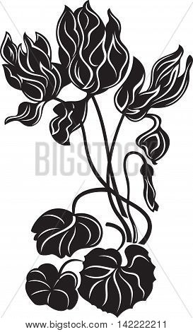 Blooming decorative flowers, black and white style