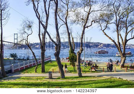 Istanbul Turkey - March 10 2013: Bosphorus in spring. View of sea through the branches of tree in Istanbul. Beylerbeyi district are enjoying the spring in the coastal people.