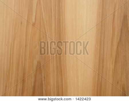 Hickory Wood Texture