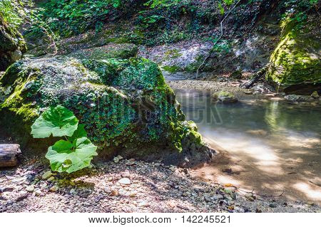 The beautiful clear water of the pools in mountain river. Water flowing in motion. The stones are covered with moss.