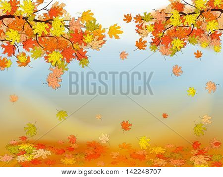 Autumn Background With Colorful Maple Leaves