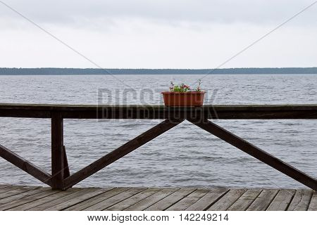 Flowers in a pot on the wooden railings over seascape