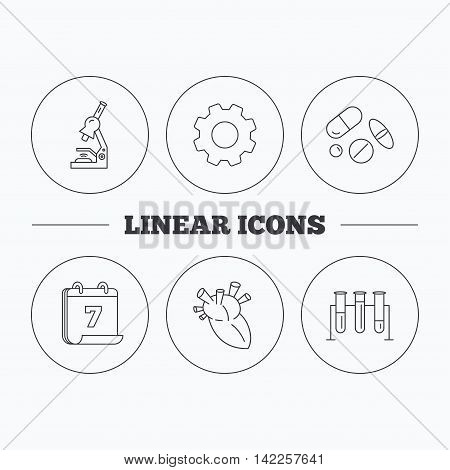 Microscope, medical pills and heart icons. Lab bulbs linear sign. Flat cogwheel and calendar symbols. Linear icons in circle buttons. Vector