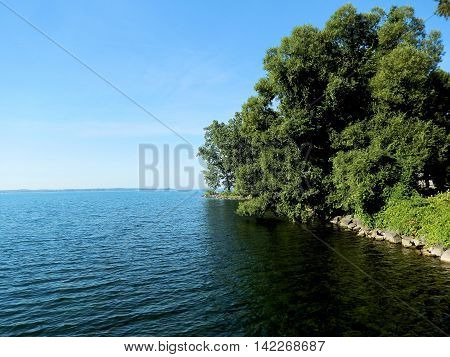 Trees Along The Shoreline of Lake Ontario, Canada