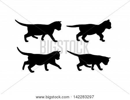Set of 4 vector black kitten silhouettes