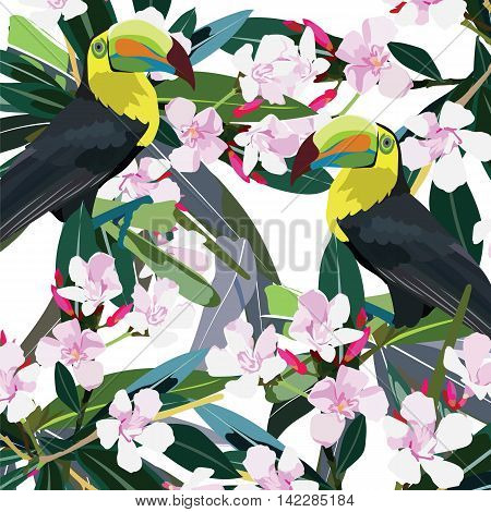 Toucan parrot and Pink flowers branch Vector. Exotic Summer floral background