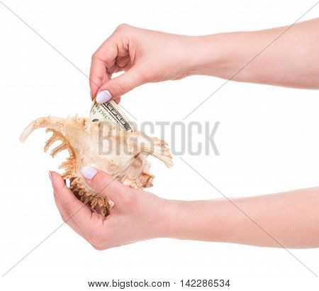 Young female hand with cash and cockleshell isolated over white background