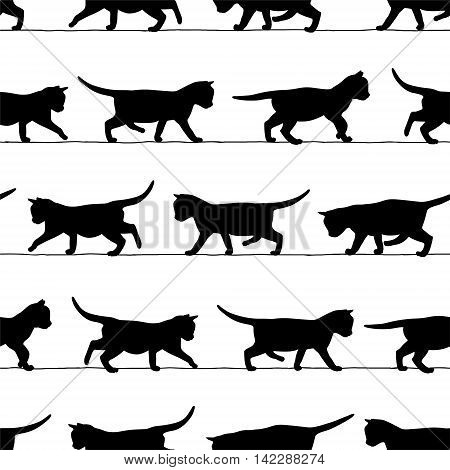 Seamless vector patten - walking kitten black silhouettes