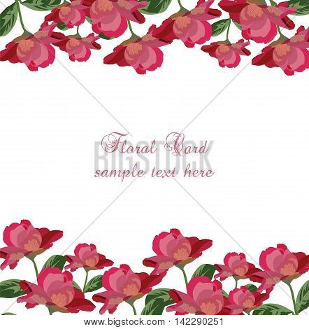 Roses floral card. Vector rose flowers banner. Vintage background greeting or invitation card for wedding birthday Valentine's Day Mother's Day