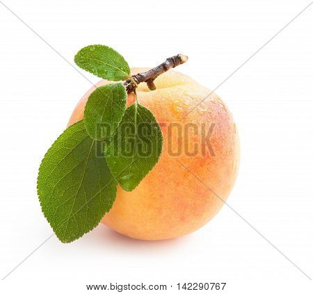 Peach. Fresh peach with green leaf and water drops isolated on white background