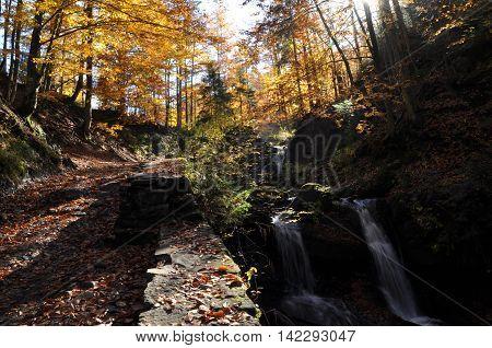 Source Vistula. Crystalline stream clean water and waterfall
