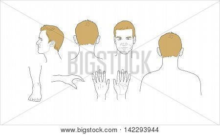 Male body parts icons set. Arm and foot leg and torso elbow and ankle wrist and finger eye and nose vector illustration