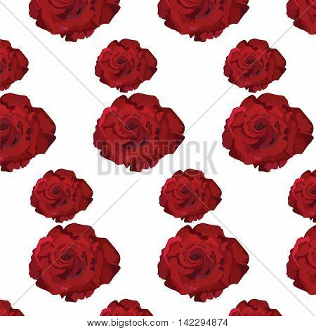 Watercolor Dark Red Rose pattern. Vector rose flower for background greeting cards and invitations of the wedding birthday Valentine's Day Mother's Day