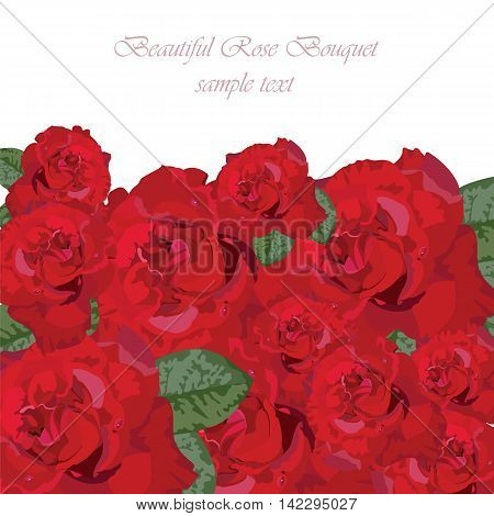 Delicate Red Rose bouquet. Vector rose flower for background greeting cards and invitations of the wedding birthday Valentine's Day Mother's Day