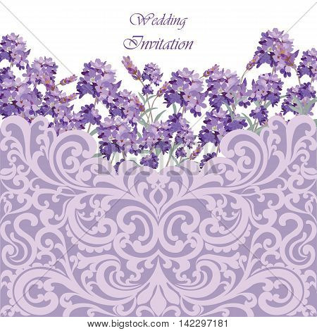 Lavender Card with lace ornamented border. Vector Gentle blossom floral bouquet. Vintage Label with lavender beautiful fragrance