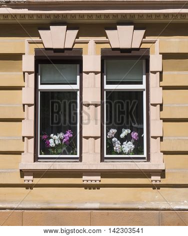 Two old beautiful windows on a stone wall in Chernivtsi Ukraine. Behind the glass multi-colored orchids can be seen