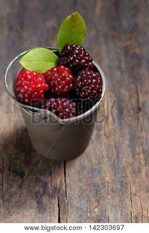 Unripe blackberry in small bucket on wooden table