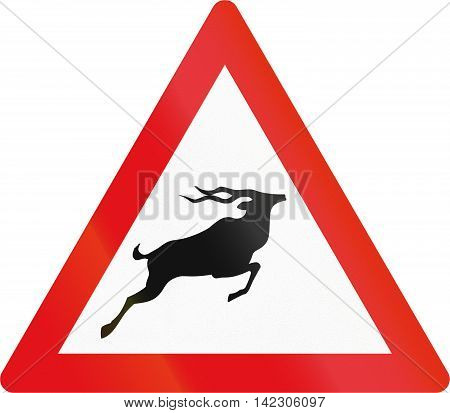 Road Sign Used In The African Country Of Botswana - Antelope