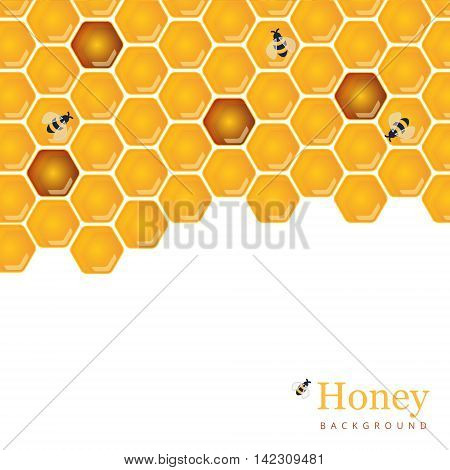 Shiny amber honey comb and bees background design. Vector natural apiary and beekeeper template