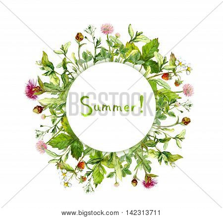 Wreath border with wild grass and meadow flowers. Watercolor circle frame