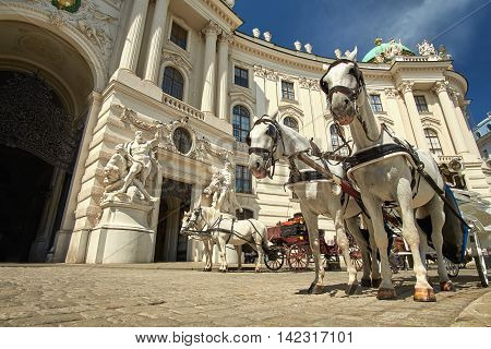 Horses and carriage tradition in Vienna Austria.