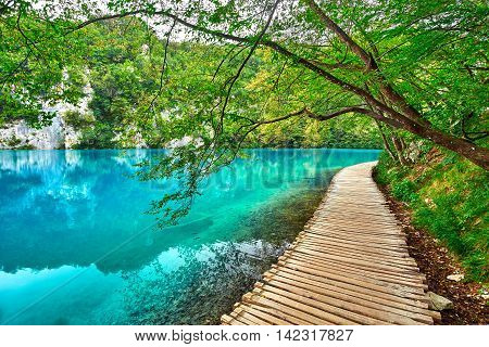 Blue Turquoise Lake in National Park. Plitvice Croatia