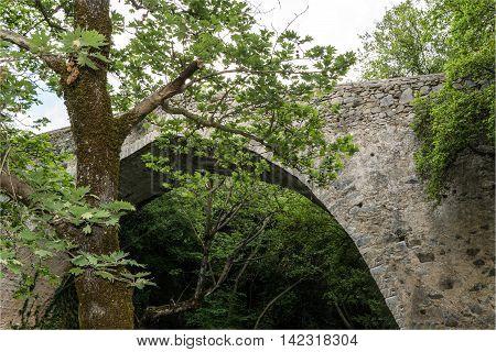 Little stone bridge crossing Lousios river in Greece.