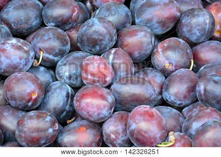 Freshly picked purple plums at farmer's market