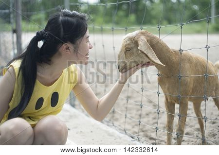 woman tease a goat in paddock play with a goat