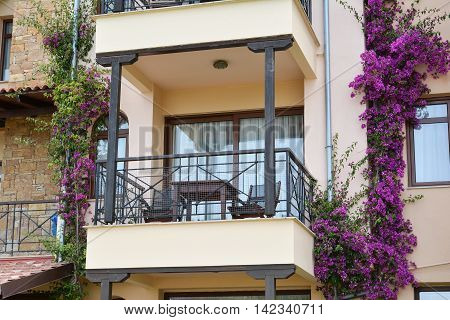 Closeup view of hotel balcony with bougainvillea flowers